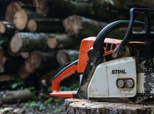 Bernstein: Free trading is like giving chainsaws to toddlers